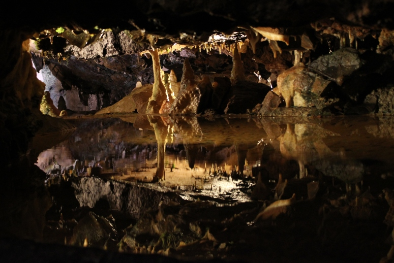 Water reflection in a mirror pool at Cheddar Caves and Gorge