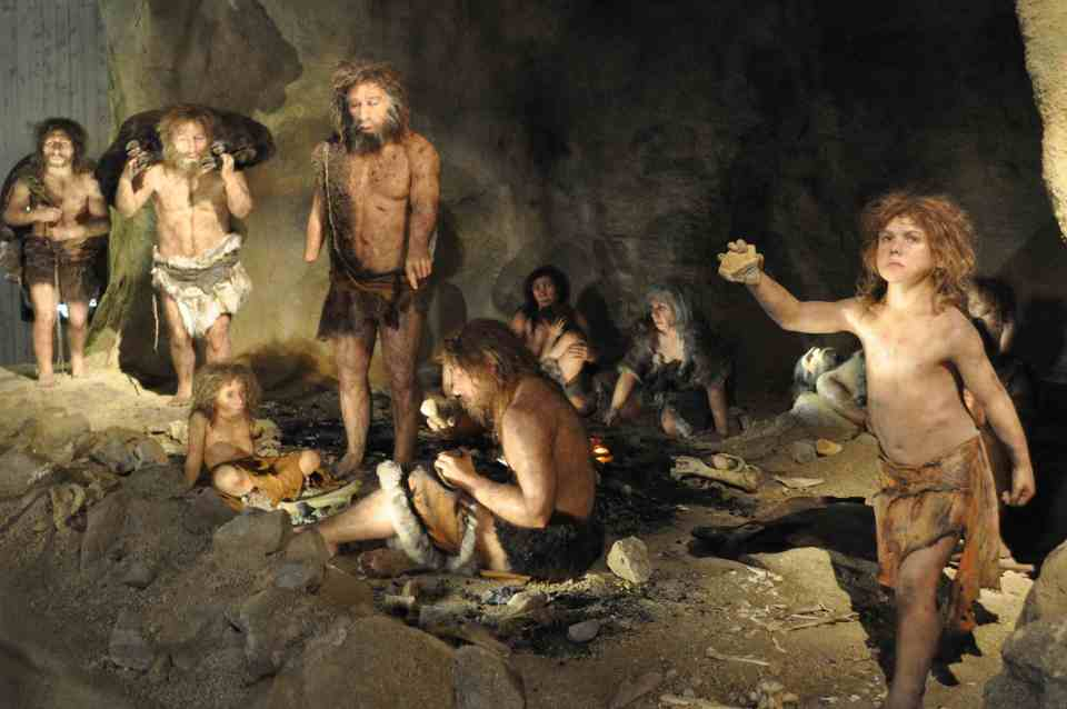 Neanderthal family life