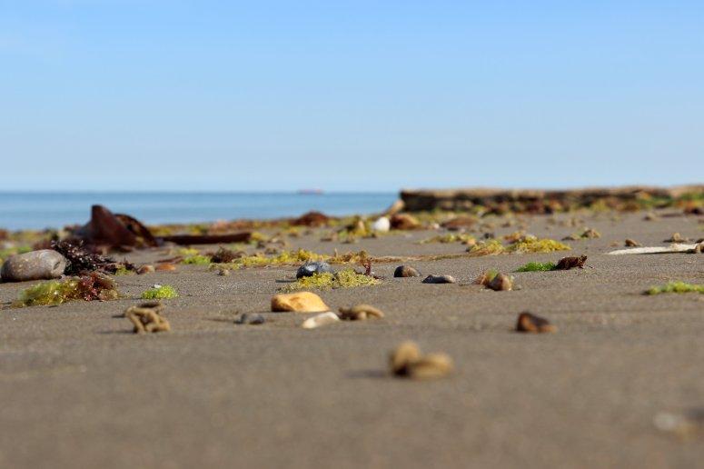 tiltshift sand